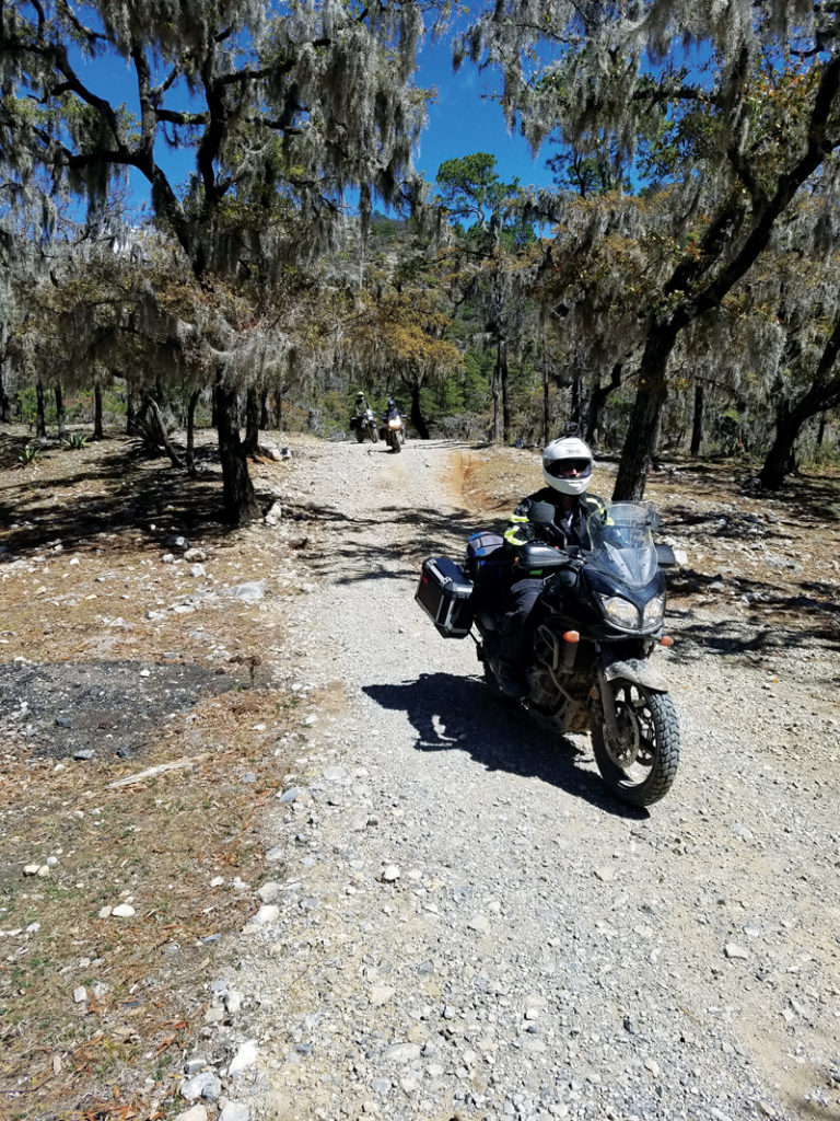 riding motorcycles in Mexico