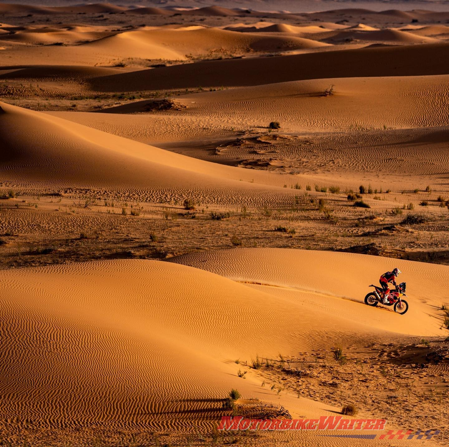 Toby Price in the dunes