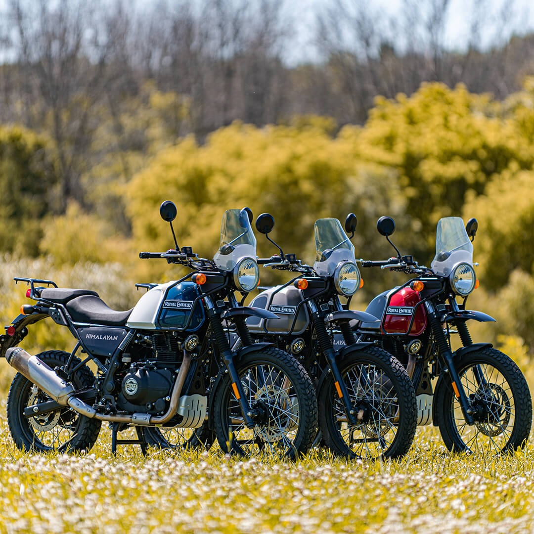 2020 Royal Enfield Himalayan models lined up next to each other