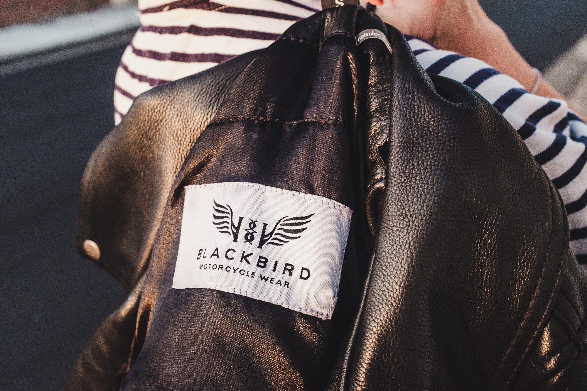 blackbird moto wear fly by night jacket