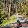 CFMoto-650 Vicroads online Survey motorcycle safety levy Victoria Yarra Black Spur country
