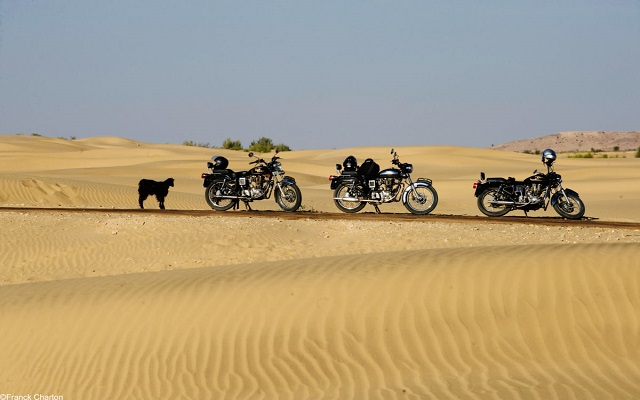 riders travelling through the That Desert in India